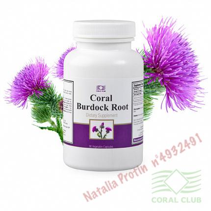 «Корал Бурдок Рут - Coral Burdock Root»