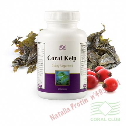 «Корал Келп - Coral Kelp»